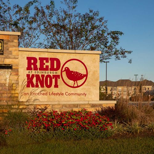 Red Knot Feat